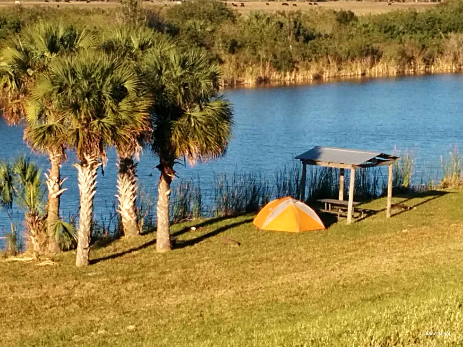 Camping along the Lake Okeechobee Scenic Trail