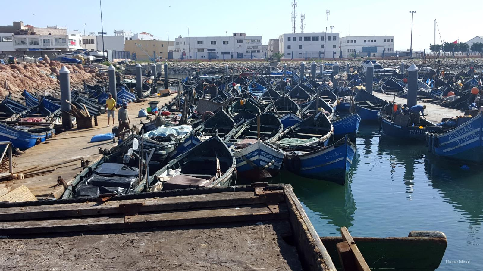Fishing Boats, Port Agadir, Morocco