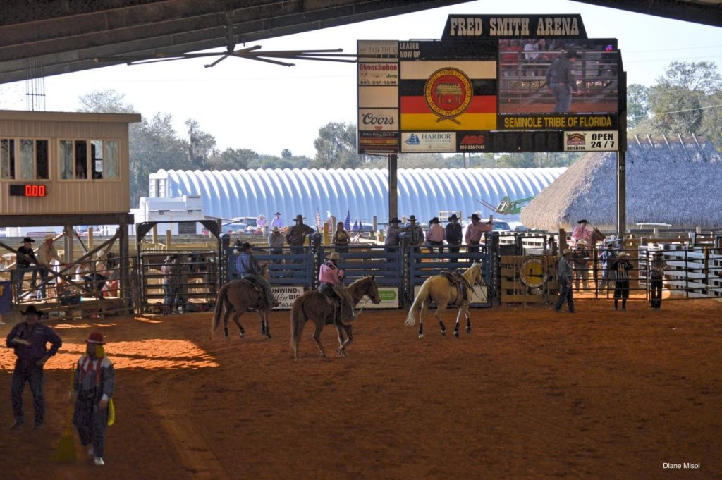 Brighton Field Days Rodeo arena