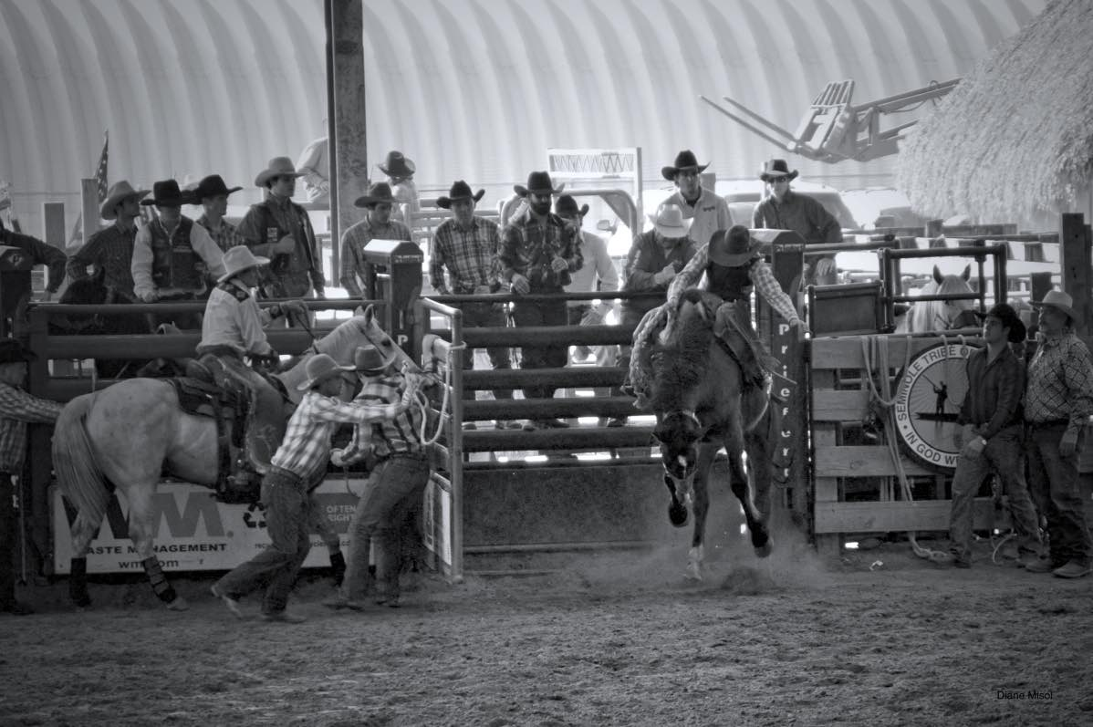 Horses and Cowboys, Non-Stop Action Rodeo – Brighton Field Days, Florida