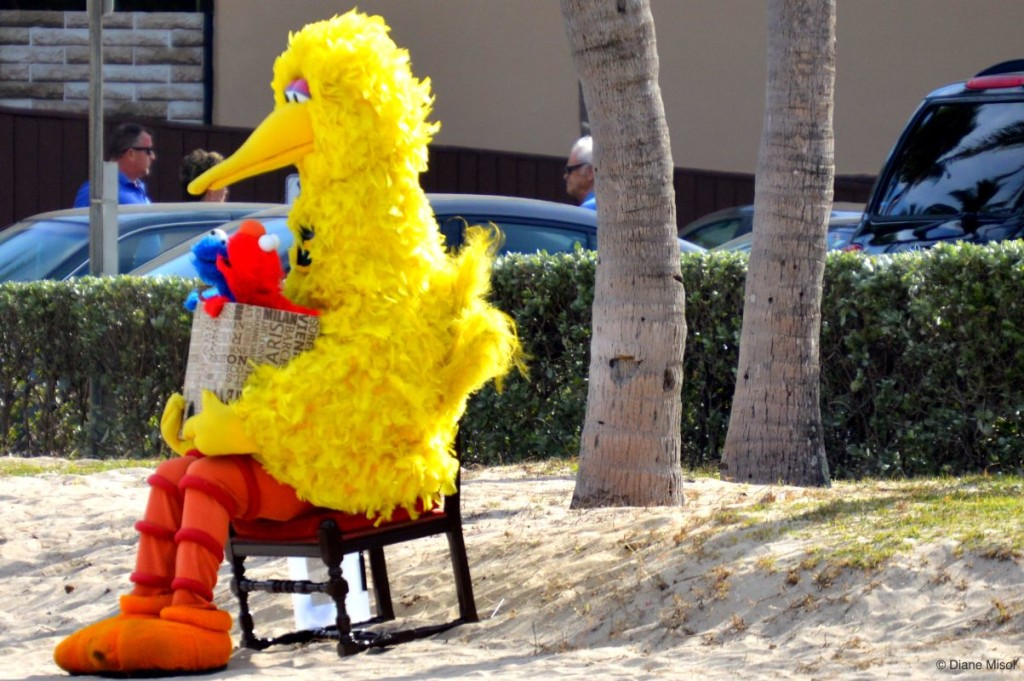 Big Bird, Fort Lauderdale Beach, Florida, USA