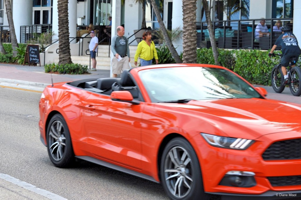 Mustang Fort Lauderdale Beach Florida USA