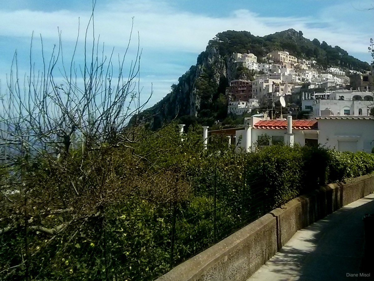 Winding Path Up to Capri town, Italy