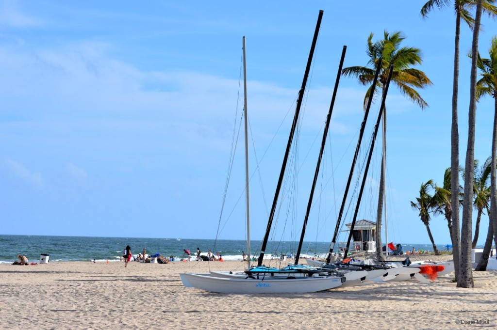 Sail Catamarans, Fort Lauderdale Beach, Florida