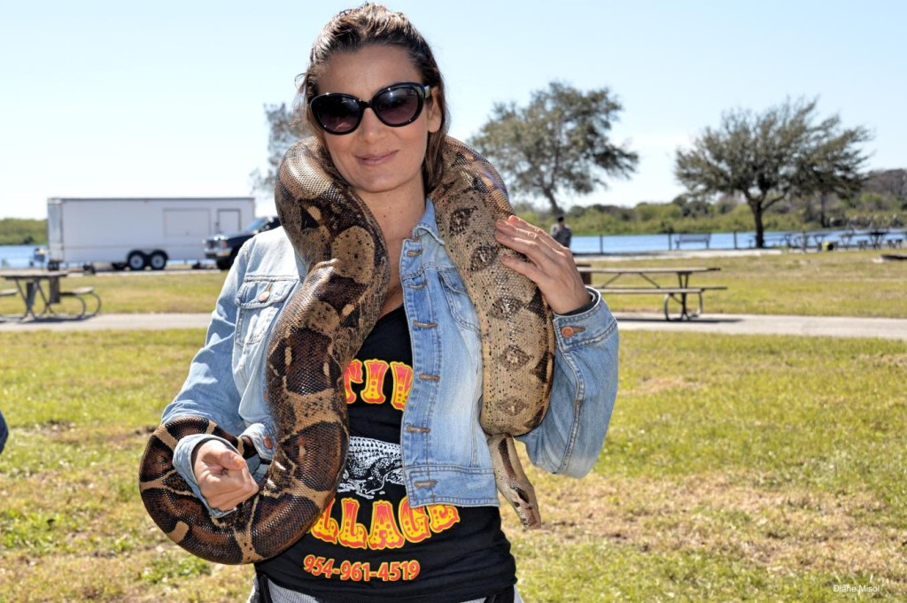 Snake Lady from the Native Village, The Battle of Okeechobee