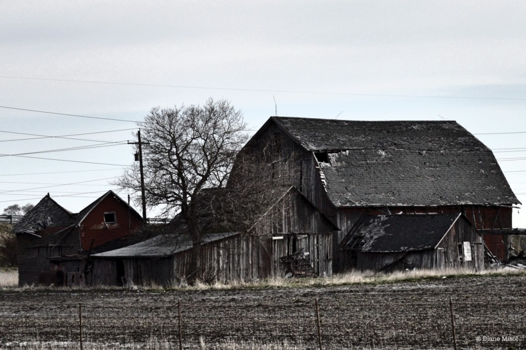 Little Red Barn - Washed with Years