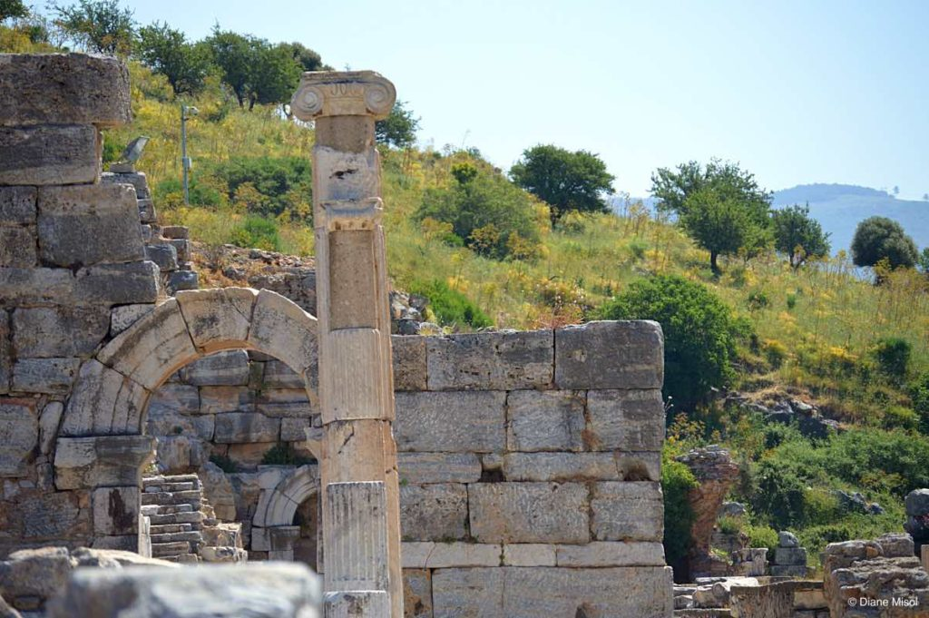 Ancient Ruins and Fields, Ephesus, Turkey