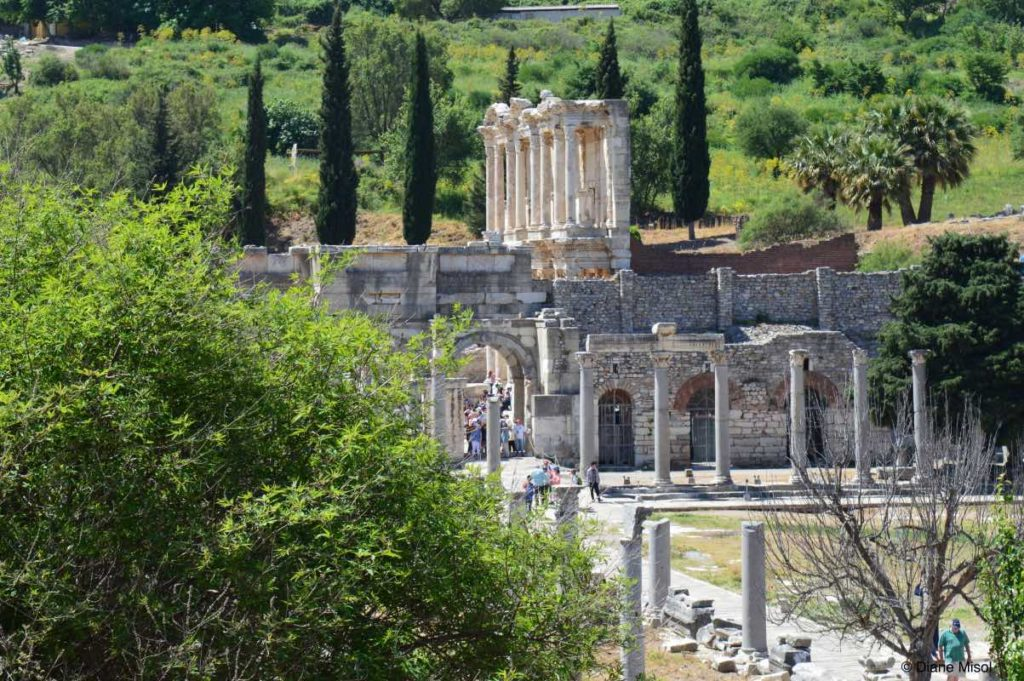 Ancient Streets and Buildings of Ephesus