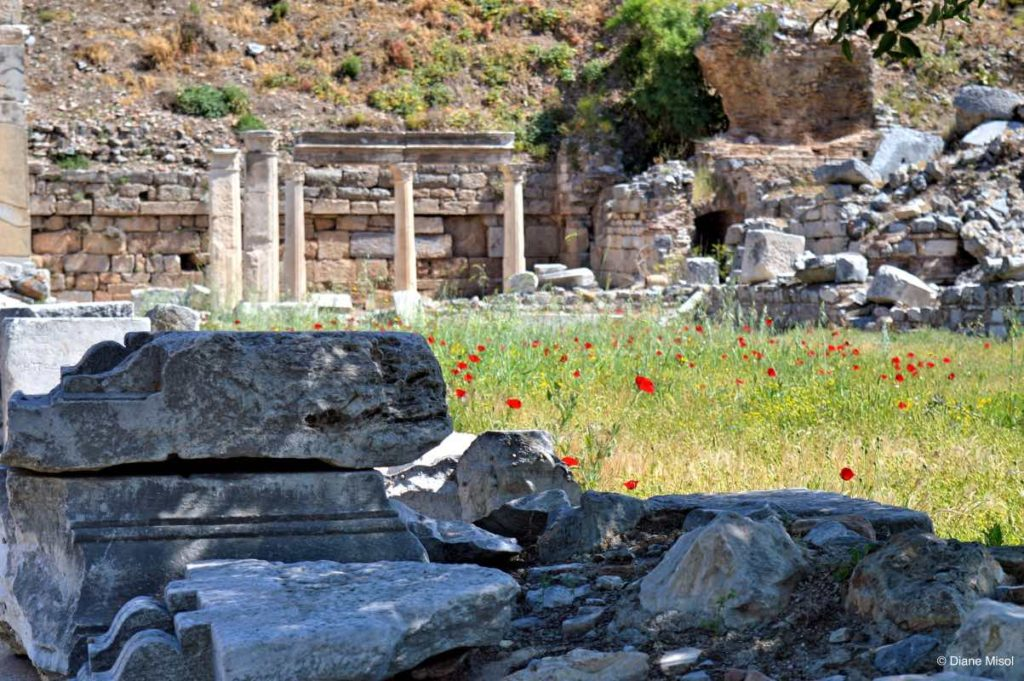 Beauty of Archaeology in Ephesus, Ancient Greek City, Turkey