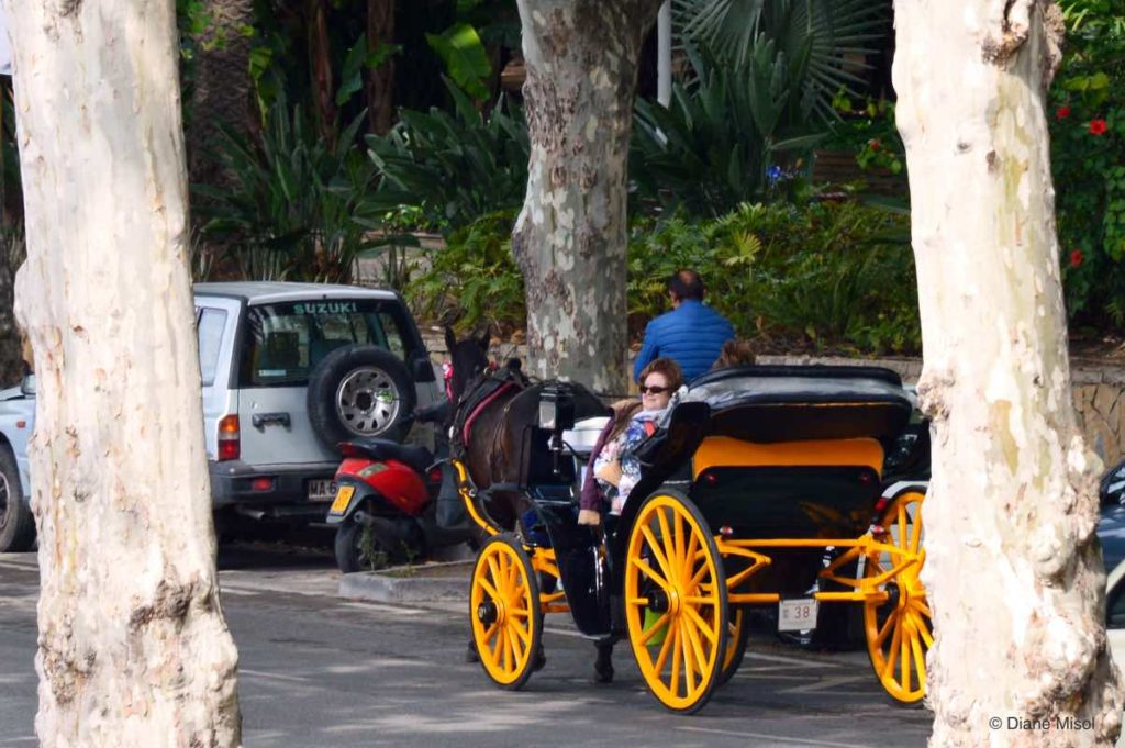 Carriage Rides in Malaga, Spain