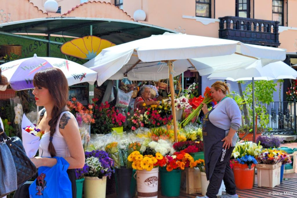 Flower Stand. Tenerife, Canary Islands