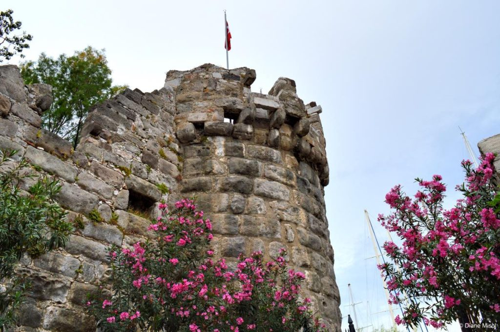 Flowers and Towers. Bodrum, Turkey