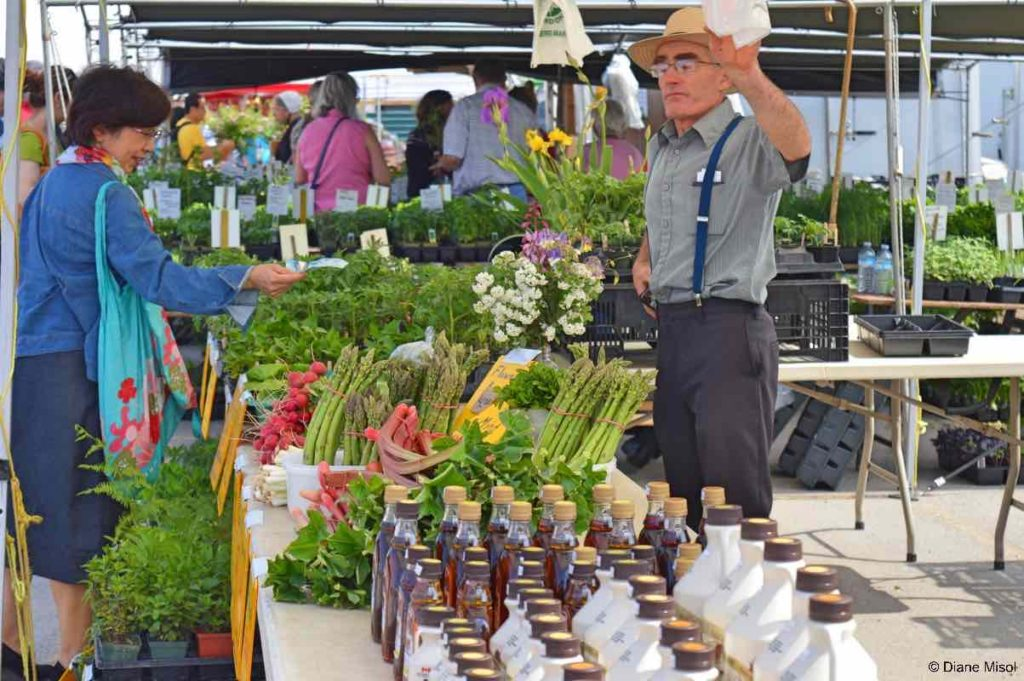 Herbs, Vegetables, Flowers and Maple Syrup. St Jacobs Market