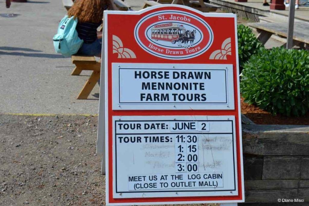 Horse Drawn Mennonite Farm Tours. St Jacobs, Ontario