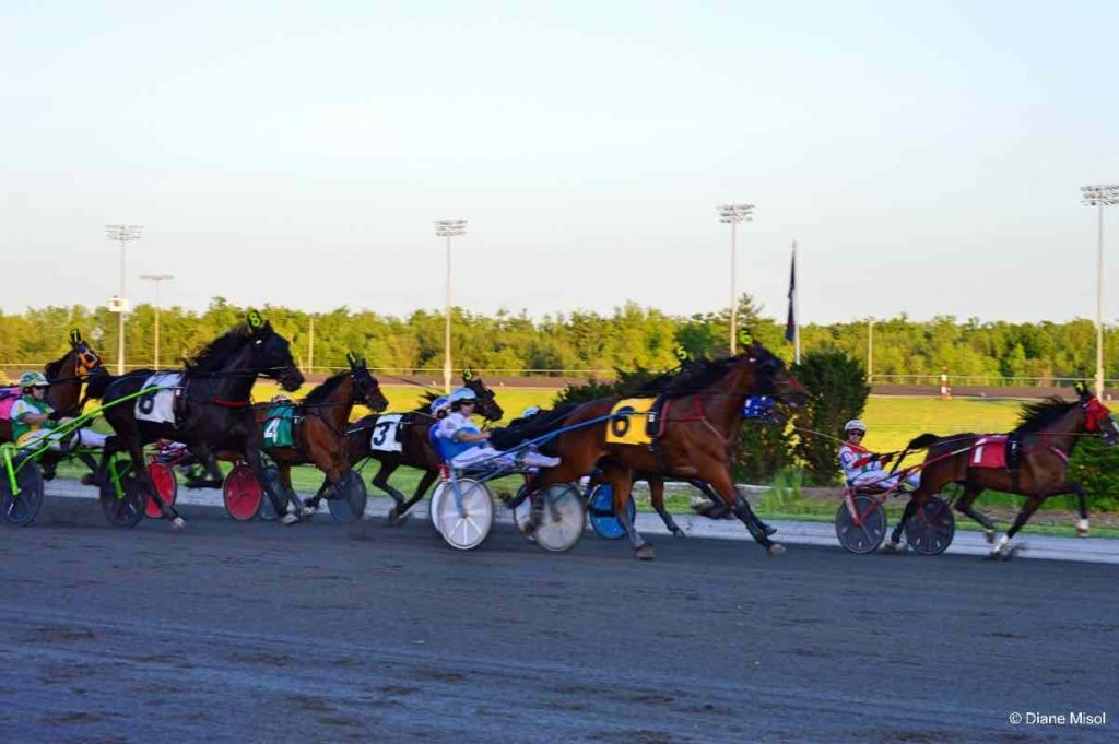 Horse Race in Motion at Mohawk Racetrack. Ontario, Canada