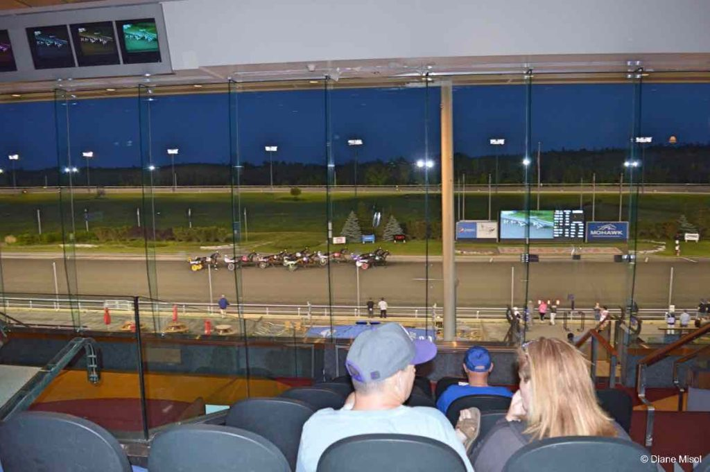 Ontario Harness Racing Views