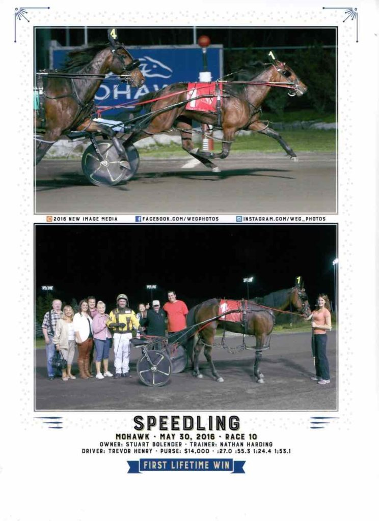 Speedling - Winning Photo. Mohawk Racetrack
