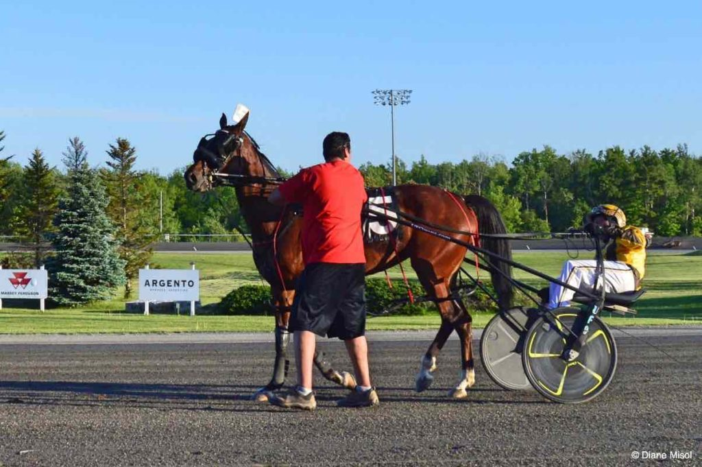 Trainer, Horse and Driver arrive for Win Photo. Mohawk Raceway, Ontario