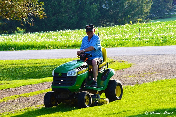 Lawn Mowing Day. Middlebrook Stables, Elora, Ontario, Canada