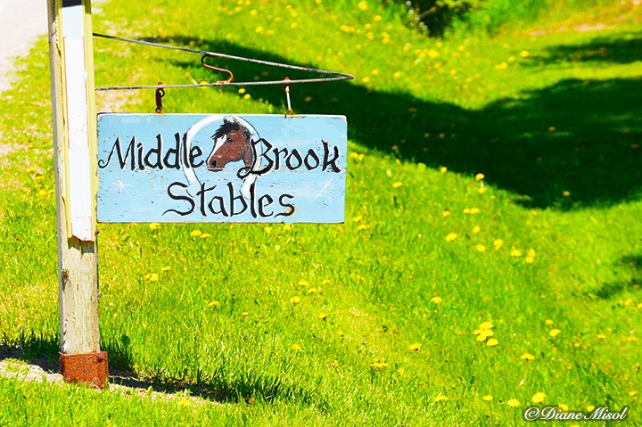 Middlebrook Stables Sign.