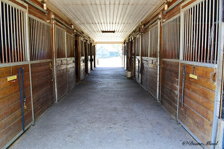 Stalls of Middlebrook Stables. Ontario, Canada