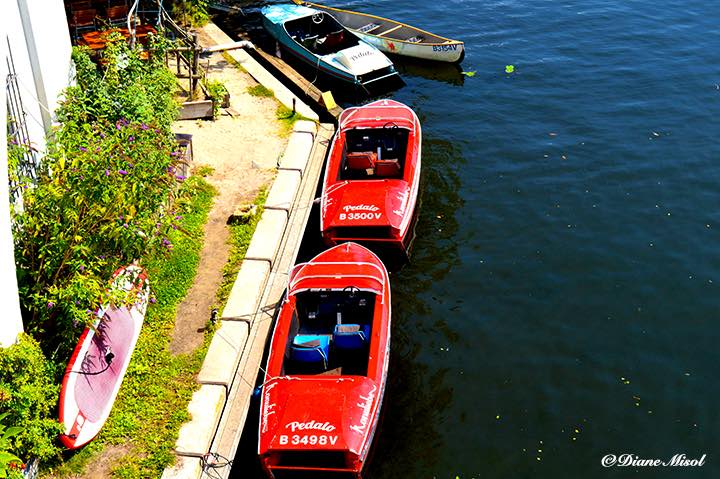 Classic 50's Style Paddle Boats. Berlin Island, Treptower Park