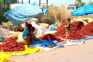 Roadside Pepper Sales, Children - New Mangalore, India