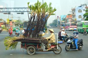 Bamboo transport on Motorbike - Ho Chi Minh
