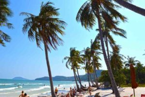 Palms and Sunshine at Sao Beach - Phu Quoc, Vietnam