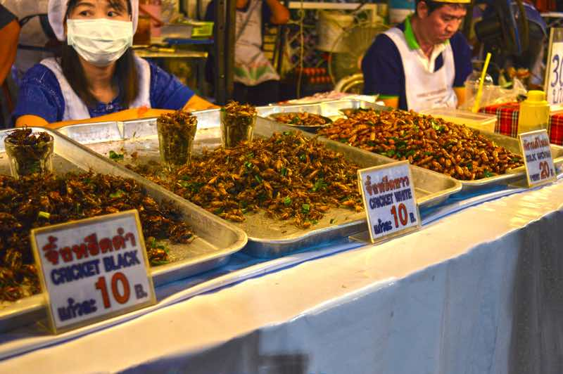 Bugs for Sale - Chiang Rai Night Market, Thailand