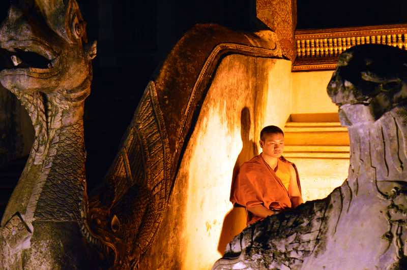 Monk By Night - Chiang Mai, Thailand