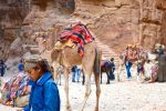 Boy and Camel - Petra - 0122