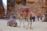 Petra Views - Jordan - 0121