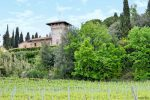 Castles and Vineyards, a Perfect Combo - San Gimignano, Italy