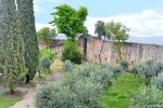 Inner Wall and Garden - San Gimignano, Italy - Livorno Cruise Port