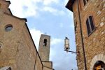 Pigeon Watches Over San Gimignano