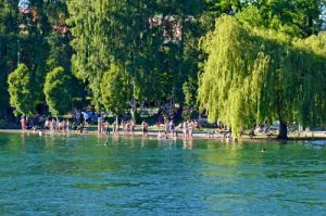 Swimming in the Rhein River - Konstanz, Germany - Schwimmen -0122