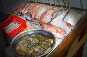 Fresh Fish Selection of the NIght - Restaurant Thu Phuong, Duong Dong, Phu Quoc, Vietnam