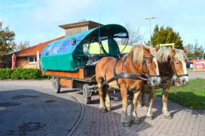 Horse and Carriage - Cape Arkona, Ruegen, Germany
