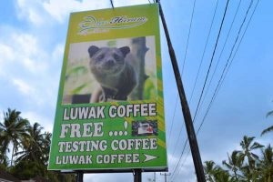 Entrance to Alas Harum Luwak Coffee - Ubud, Bali