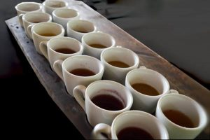 Sample Tea & Coffee - Alas Harum, Ubud, Bali