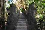 Bridge Over River - Sacred Monkey Forest, Bali